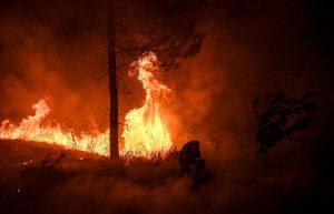 Wildfire Wake Up