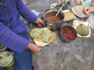 Wilderness Soft Tacos