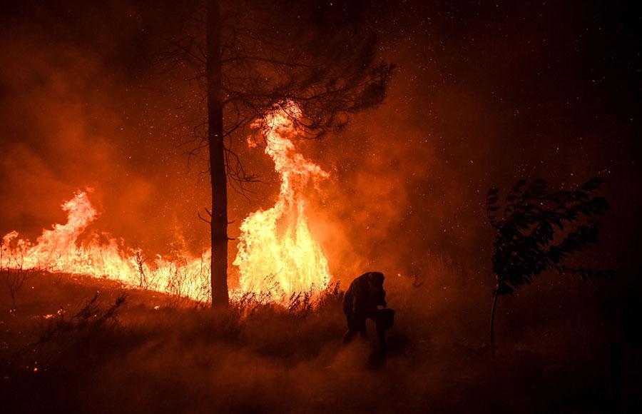 Wake Up Call: California Inferno