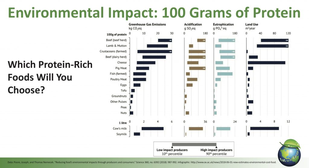 Chart Showing Environmental Impact of producing 100 grams of protein